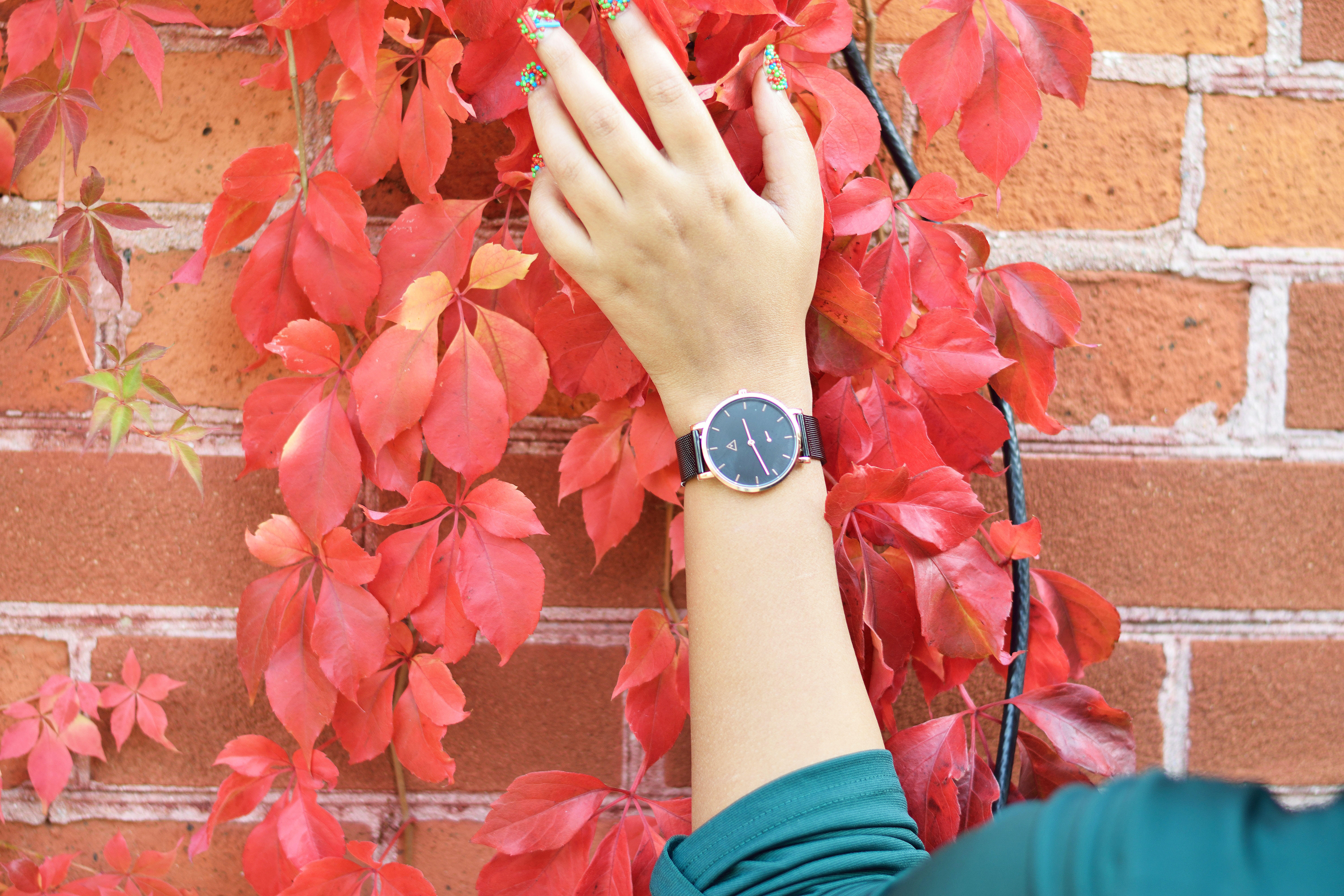 Catch hold of time with Medium Watches