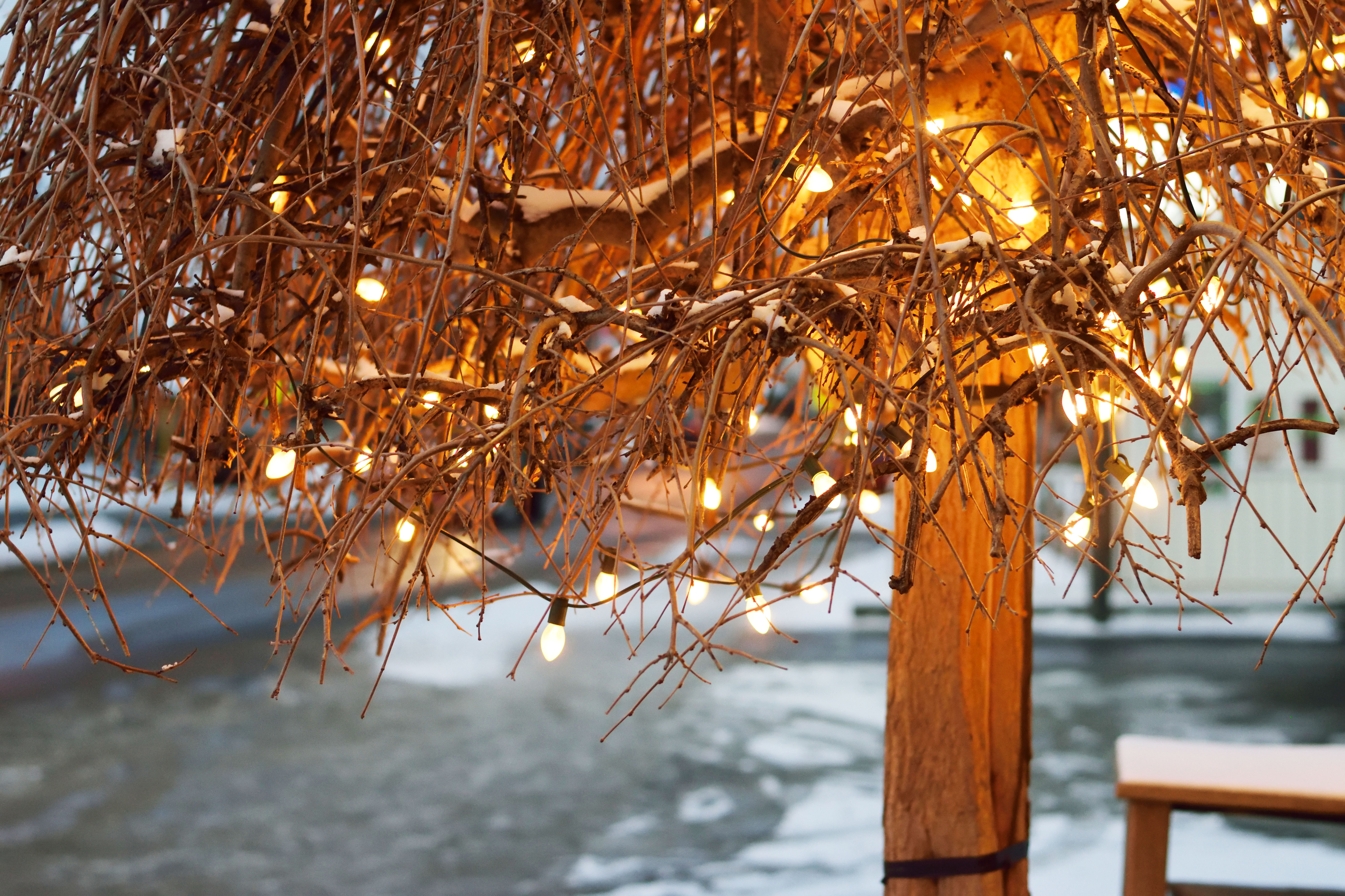 A Christmas eve to remember at St. Jacob's Village